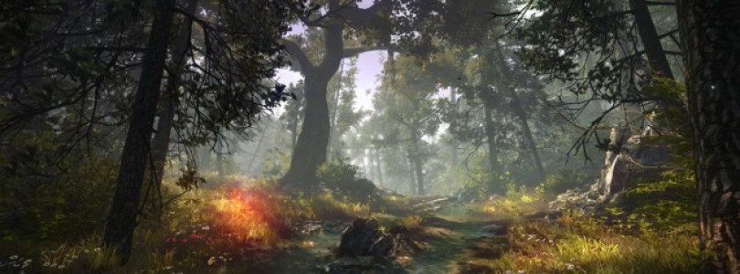 The Witcher 3 To Be Announced In Time For E3 2013?