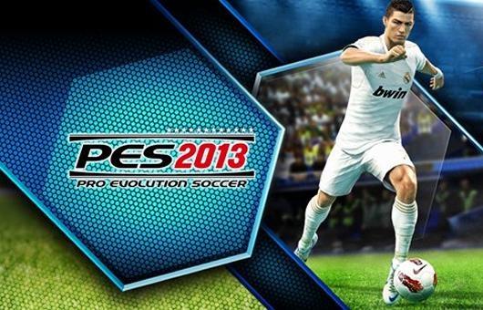PES-2013 (1)