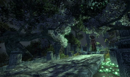 The Elder Scrolls Online Screenshot 12