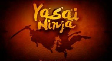 RECO set to simmer the veggies with Yasai Ninja on Xbox One