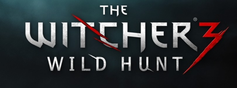 Go your way in The Witcher 3: Wild Hunt